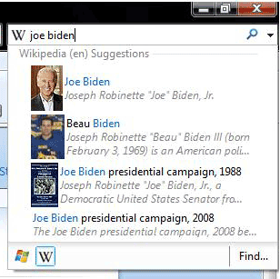 Internet Explorer Visual Search 8