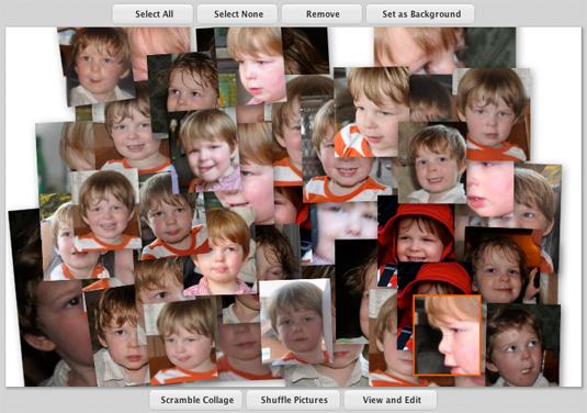 Picasa Photo Collage